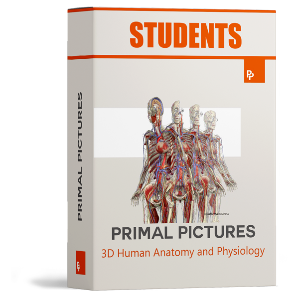 Primal Pictures Student Licence
